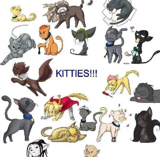 Qui préféré vous en chat ??