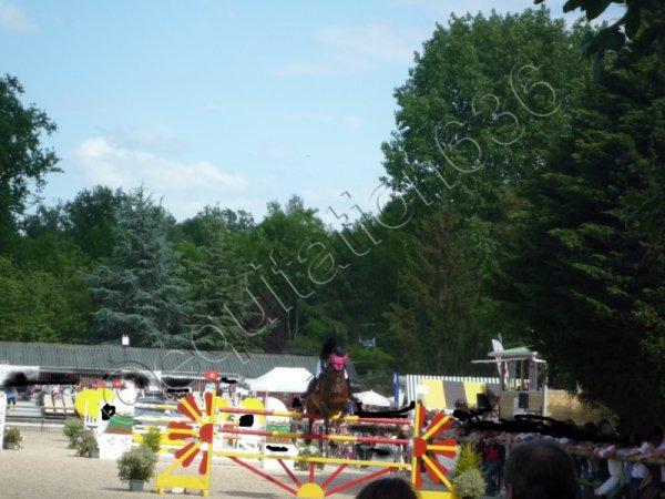 Concours de saut d'obstacle 2011