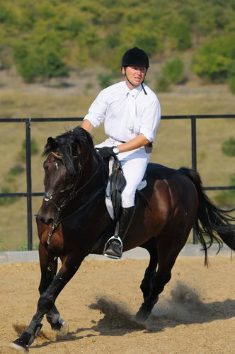 Trouve un cheval qui t'écoutera ; qui te rappelle que tu est un bon cavalier ; qui restera toujours a tes côté. Attends le cheval qui t'aimeras autant que tu l'aime ; qui aura envie de te laisser monté sur son dos alors que n'est qu'un simple cavalier ; qui te laisse lui prendre son pied, et monter sans selle licol. Attends celui qui te rappelle constamment à quel point il tient à toi et te trahiras jamais.