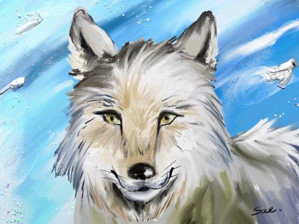 Un loup des neiges