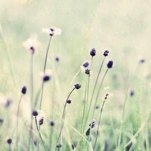 """""""Et les années passaient, mais on ne les voyait pas passer. Le bonheur ne laisse pas de traces. C'est une étoile filante. Il passe, c'est tout, il remplit la vie d'images éblouissantes qui défilent à toute allure et qu'on ne retient pas."""""""