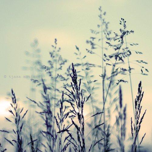 """""""Les mêmes épreuves ne marquent pas les êtres de la même façon : certains s'ouvrent au monde, d'autres s'en éloignent ; renoncent. Qui décide de quoi ? On ne le sait pas. Certains se sauvent, d'autres se noient. On ne peut rien empêcher."""""""