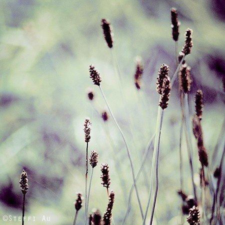 """""""La mélancolie, c'est le sentiment d'avoir perdu, et c'est la peur de perdre. C'est être en deuil de tout, tout le temps, même au moment où les choses arrivent, si bien qu'on ne peut pas les vivre."""""""