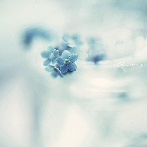 """""""Il est des moments où il faut oublier les vieux espoirs et s'en créer de nouveaux."""""""