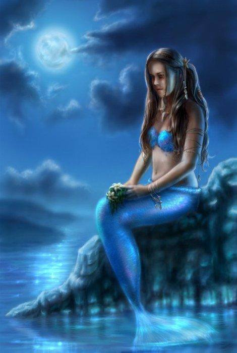 Blog de golfinhos54