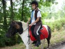 Photo de LesPoneyEtChevaux