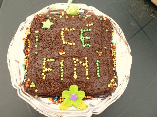 le dernier gâteau ''pour la fin de la pendaison de crémaillère'' avec mes pe tites touches de couleur                                                                         pour aller avec les jeux de lumières ur
