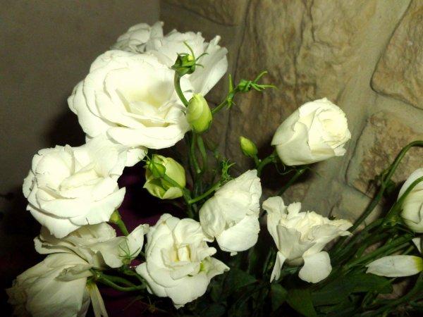 bouquet de Lisanthius j'aime ces fleurs '''mais j'arrive pas a les conserver ''