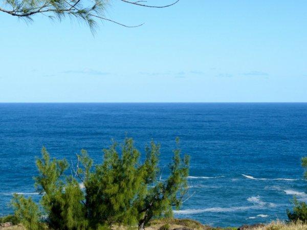 QUi a pris des coups de soleil  ,,OUI  EN ce LONG weekend au bord de ma mer  ! heu !  mdr
