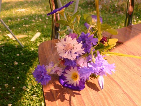 son petit bouquet  et aussi   trouver par ma petite fille jeudi dernier                                                             !!!ENFIN ELLE EN A Un