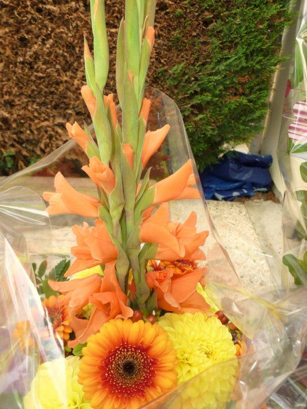 ils on eû de tres belle fleurs et  plante fleurie