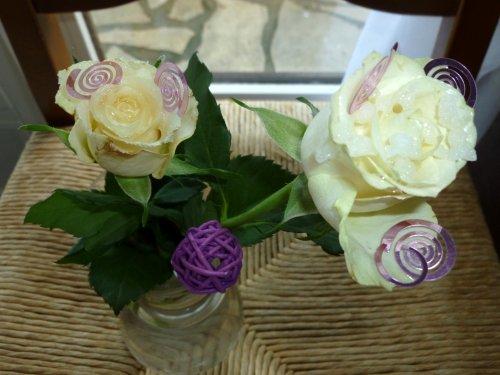 DE VENDREDI APRES MIDI des tout petit essai de rose ''pas cher du tout'