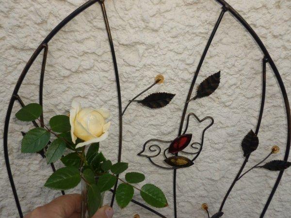 bonne journée  MA TOUTE 1ére rose ((photo pris a 6h45ce matin))