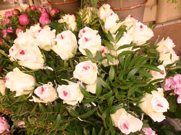 fan de belle fleur