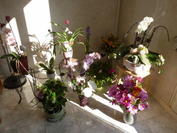 avec  mes fleurs de  ma salle BELLE    JOURNEE   DE       JEUDI