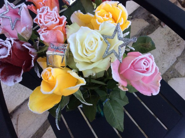 Mes  roses givrées .je les adores
