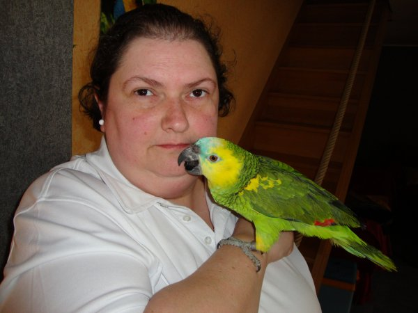 vivre avec un perroquet, êtes-vous fait pour cela?