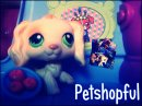 Photo de petshopful