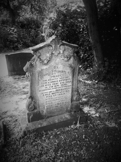 Quelque part dans le cimetière....