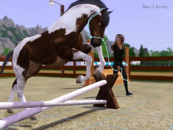 photo cheval qui saute