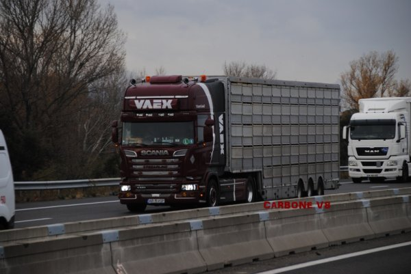 Transport d'animaux Vaex.