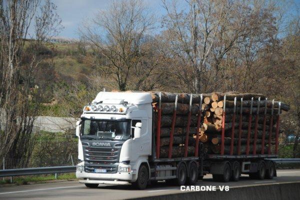 Transport de bois en Scania.
