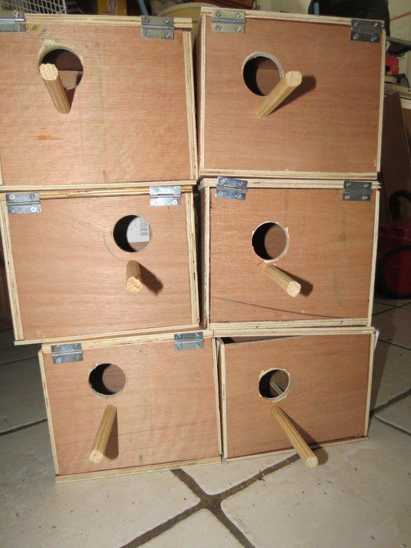 articles de gaspard14 tagg s cage nid passion des. Black Bedroom Furniture Sets. Home Design Ideas
