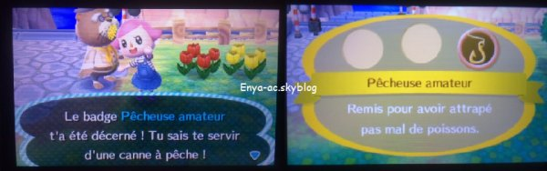 #5 Premier badge, Anniversaire, et enfin je passe en photos HD !