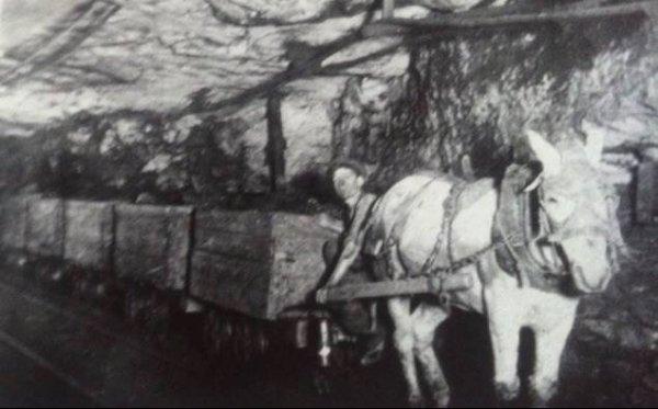 une photo ançiènne dans les galeries on tirait les wagonnets avec un cheval à l'époque