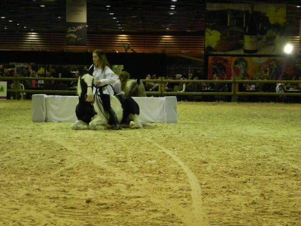 Equita'lyon 2010