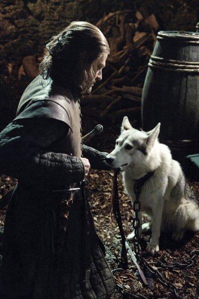 66. Les loups-garou de la maison Stark