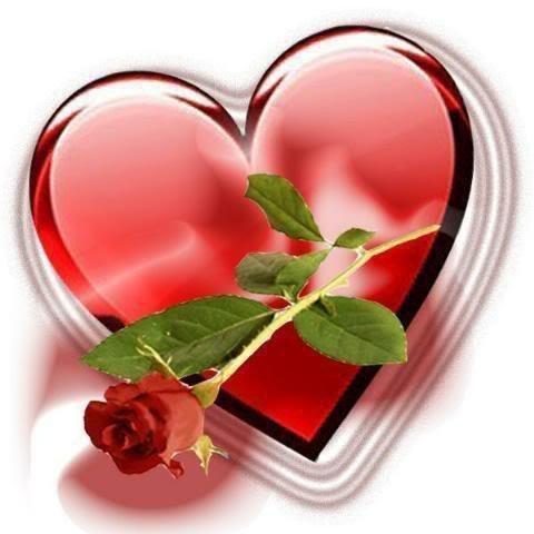 Bonjour A Vous Une Rose Pour Dire Je Je T Aime Blog Love You
