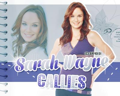 SARAH WAYNES CALLIES- Déco - Créa -