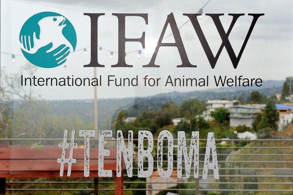 -- Goran pour IFAW --