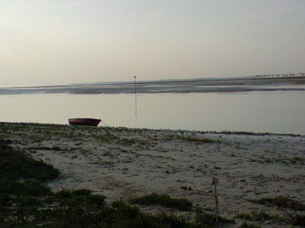Le paysage dans notre région (2)