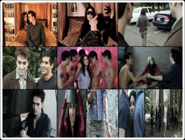 Les Parodies de Twilight (de HillywoodShow)