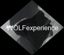 Photo de WOLFexperience