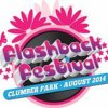 Flashback Festival 2014