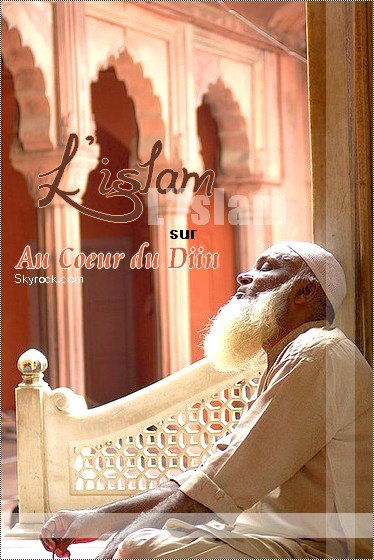 L'islam, une religion ... et un mode de vie.