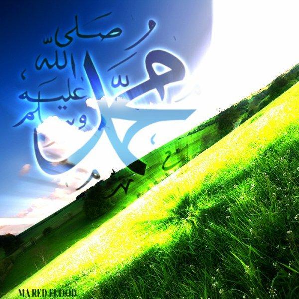 Accroches-toi si tu ne veux pas tomber au fin fond d'al-Jahannam.