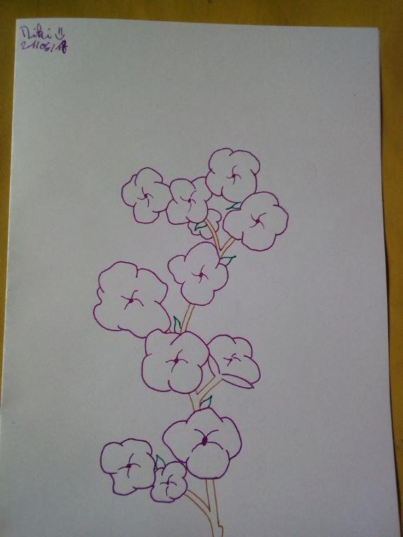 Fleurs de sakura (enfin je crois)