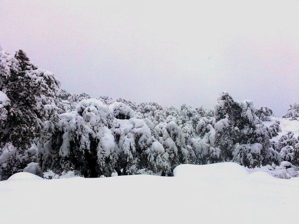la neige a tassaft.mila