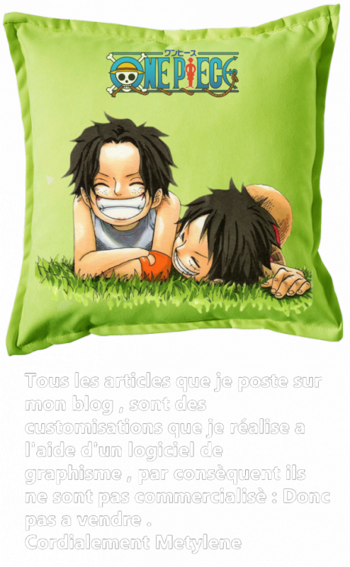 Renders Coussin vert One Piece Ace et Luffy