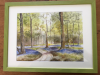 Un coin de Nature (aquarelle) par Evelyne CACITTI