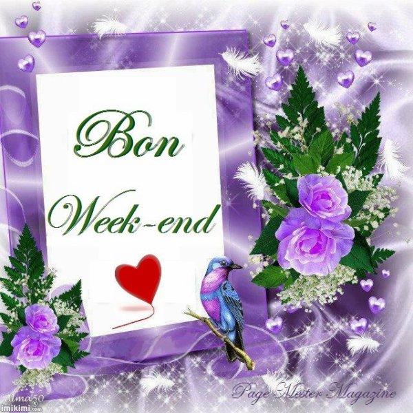 Bonjour J'ai Passer Un Très Bon Samedi Soir En Famille Et