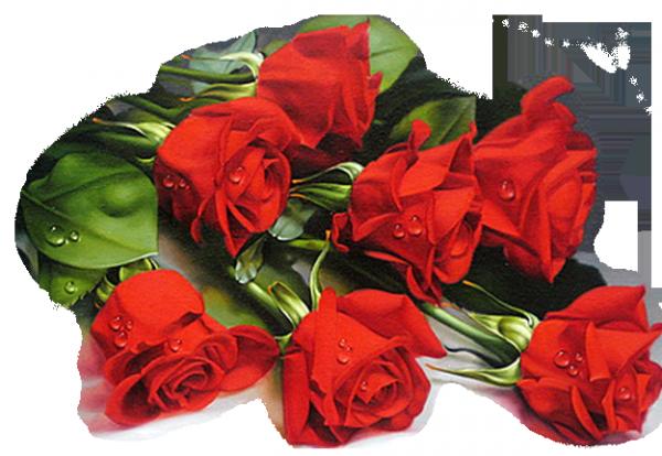 bonsoir mon amie SOULOEIDELANGE56 et mercie du fond du coeur pour ce magnifique cadeau car cela ma fais très plaisir au coeur et je te souhaite une bonne semaine et un bon lundi et mercie pour c est magnifique commentaire et je te fais tout plein de gros bisous du coeur ton amie gisèle car l amitiè c est très sacrè pour moi dans mon coeur