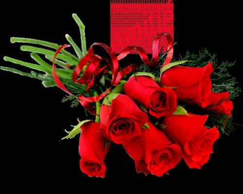 a mon tour de vous offrirent un magnifique cadeaux mes amies et amis et je vous souhaitent une très belle soirèe a vous tous et je vous fais tout plein de gros bisous du coeur ton amie gisèle car l amitiè c est très sacrè pour moi dans mon coeur