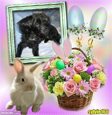...........Bonsoir !!! Je te souhaite de bonne fêtes de Pâques J'espère que tu vas bien Bonne soirée et douce nuit Gros bisous du coeur  _____§§§§§§§§____________§§§§§§_____ ____$$$______$$________$$______$$$ ___$$$$____ ____$$____$$________$$$$ ____$$$______$$__$ $__$$______$$$ ______$$$$$$$$_$$ $$__$$$$$$$$ ______________$$$$____$$$$ _________$$$$$$$$______$$$$$$$$ _____ $$$ $$$$$___________$$$$$$$$ __$$$$$$__§_______________§_$$$$$$  _________§____JOYEUSES___ § .________§ _________________ §  ________§._______FETE ______.§ ________§.__________________ §  ________§________ DE _______ § _______.§____________________ §  _______$_____________________ § ______$_______ PAQUES ________§  _____§__________________________§ ____$___§§§§§§§§§§§§§§§§§§§§§§§__§ ___$____§§§__________$__________§§§ __§__§$§____________§§§_________ §§§§  __§§§_____________$$$$$$$__________§§§ _§$§_______________$$$$$____________§$§  _§$________________$$$$$_____________§§ __$$§_______________$$$____________§$$  ____$$$$§______________________$$$$ ________§§§§§§§§§§§§§§§§§§§§§§§§ _______