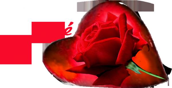 bonjour et bonne fète a toute des maman du monde entier pour demain dimanche et je vous fais des gros bisous du coeur ton amie gisèle qui vous adorent beaucoup car l amitiè c est très sacrè pour moi dans mon coeur et bon week-end