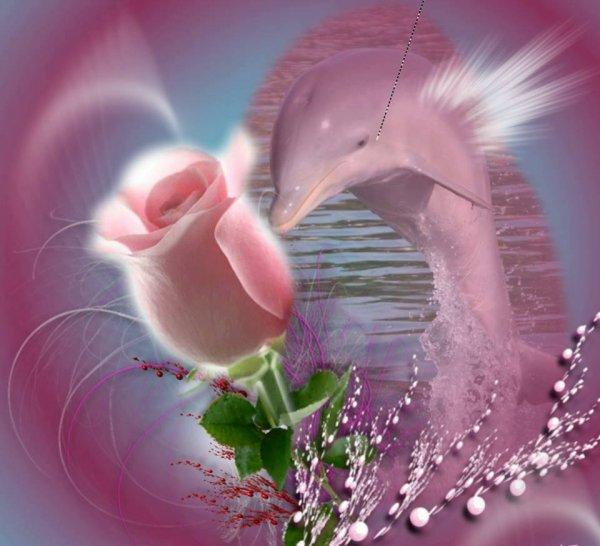 je vous souhaitent a vous tous mes amies et amis une bonne soirèe et a mon tour de vous offrirent un magnifique cadeau pour vous remerciez car j ai ètè très heureuse et ainsi que mes commentaires que me fait très plaisir au coeur et je vous fait tout plein de gros bisous a vous tous ton amie gisèle car l amitiè c est très sacrè pour moi dans mon coeur